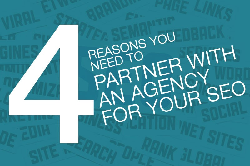 partner with agency for SEO