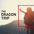 The Dragon Trip - Brand. Build. Business